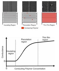 percolation threshold