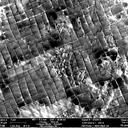 Dislocation network in a superalloy after creep imaged by channelling contrast in SEM