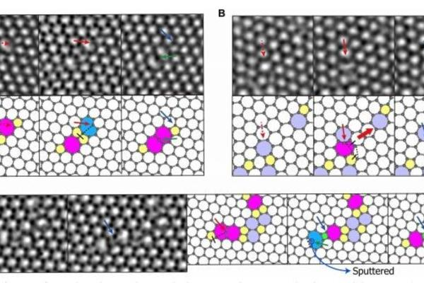 direct observation and catalytc role of mediator atom in 2d materials