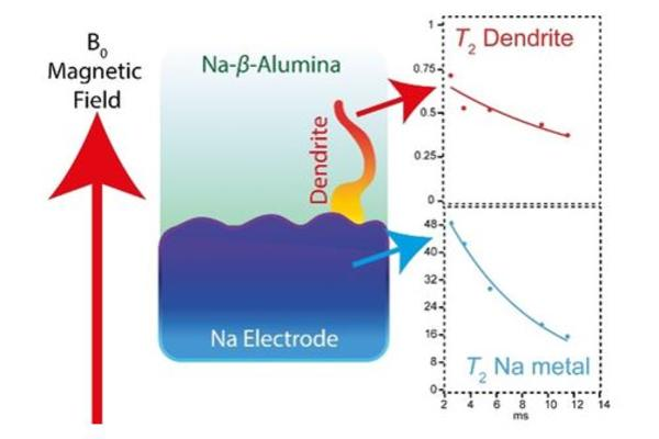illustration of magnetic field and na electrode with dendrite