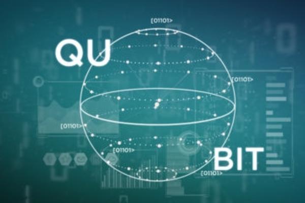 Quantum Computation QUBIT