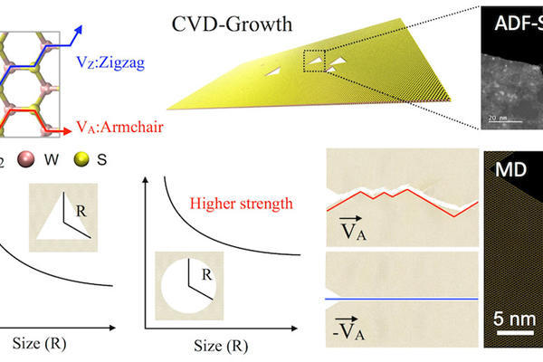 Anisotropic Fracture Dynamics