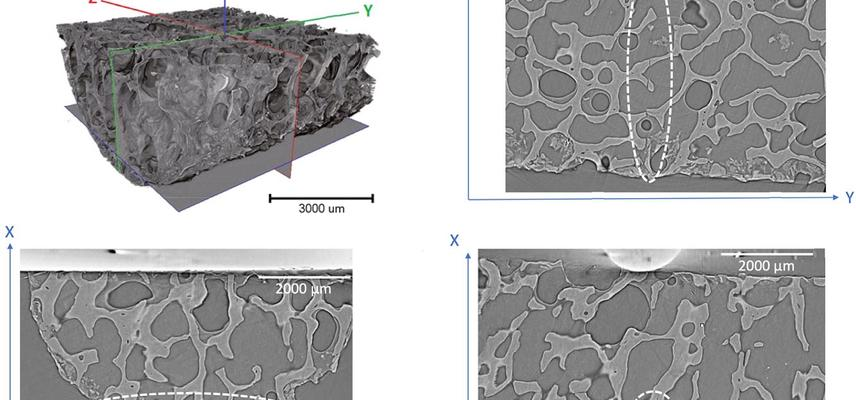 Cross-sections through 3D tomograph of a crack in bone