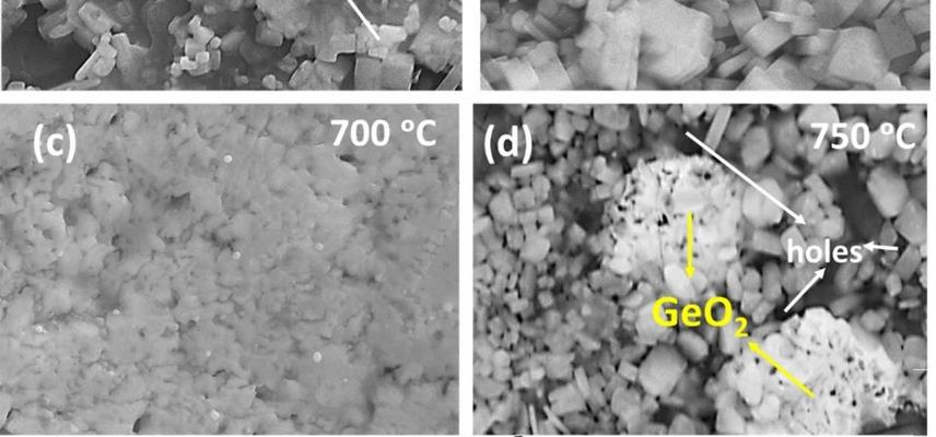 SEM images of the lagp hot sputtered films after annealing at various temperatures
