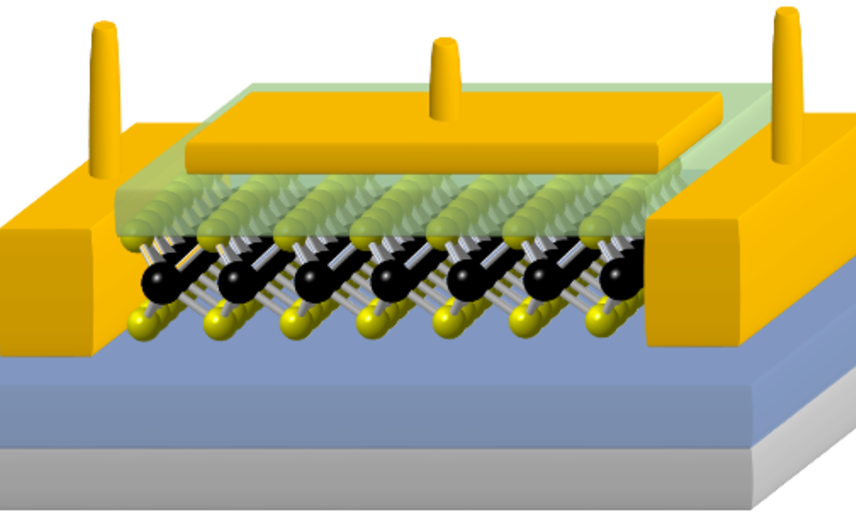 2D field effect transistor based on MoS2