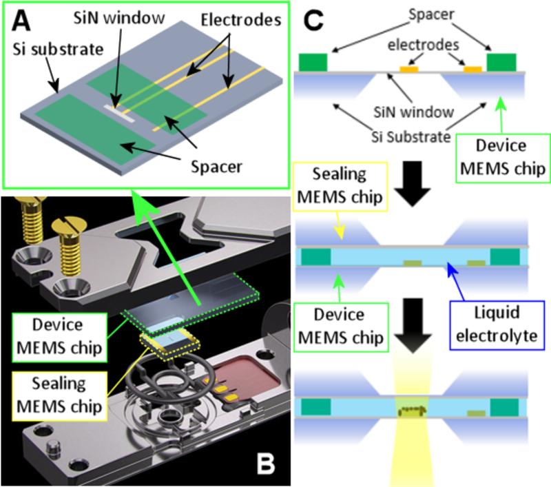 TEM holder for imaging MEMS chip operating in electrolyte