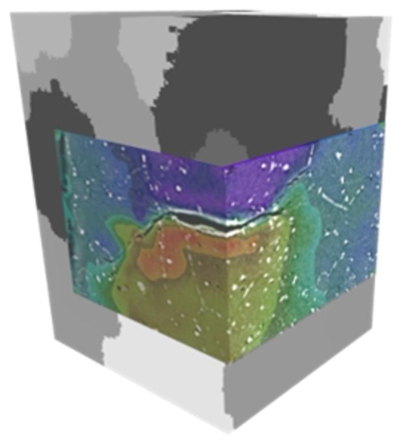3D Mapping of fatigue crack opening displacements by digital volume correlation